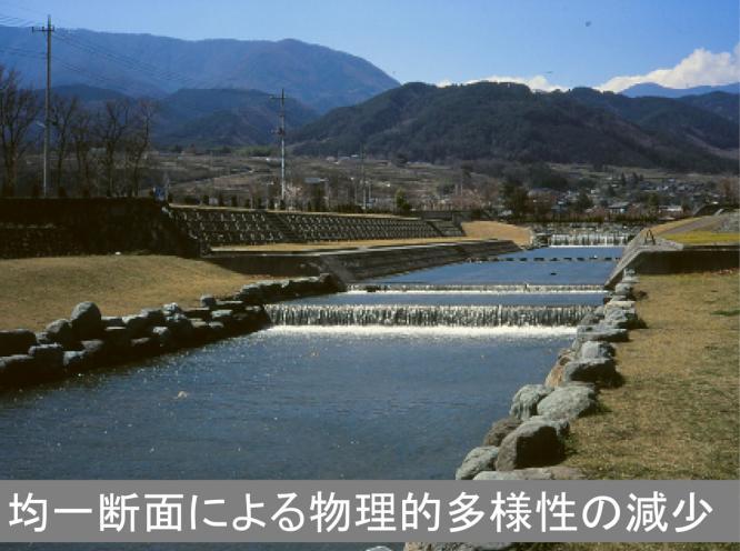 パワポ-04.jpg